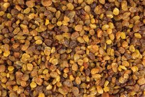 Dierenkliniek Tiel-Drumpt: Druivenvergiftiging, rozijnen