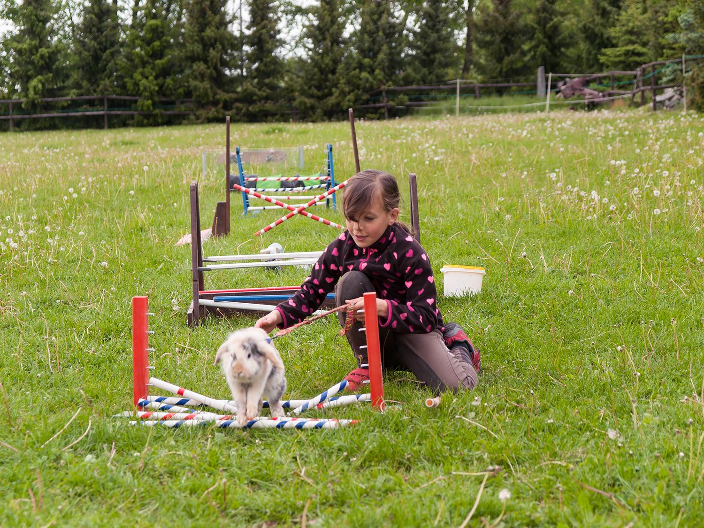 Dierenkliniek Tiel-Drumpt: Je kunt konijnen heel veel leren.