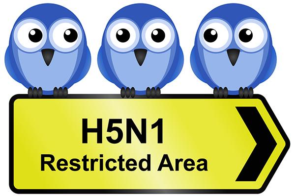 Dierenkliniek Tiel-Drumpt: H5N1