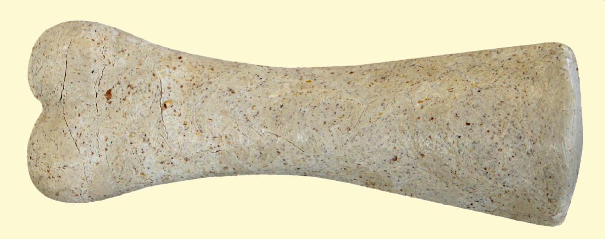 Dierenkliniek Tiel-Drumpt: Februari 2015 Gebitsmaand: De chew-it is een smakelijk kauwbot en goed voor het gebit.