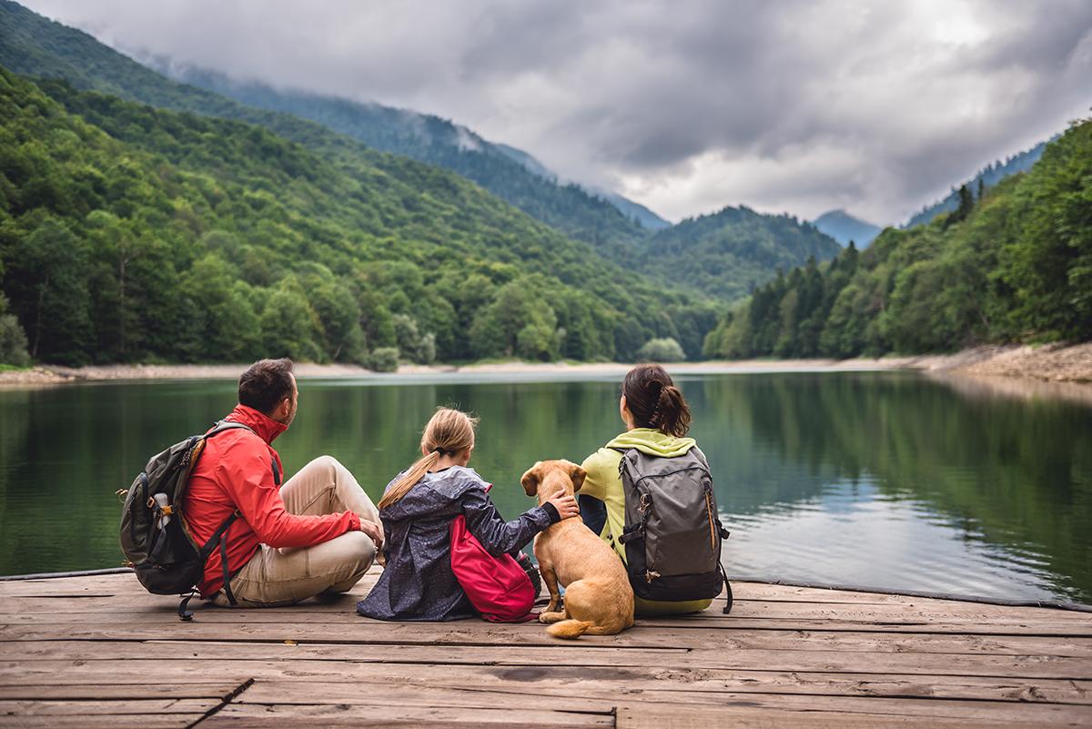 Reizen met huisdieren van en naar het Verenigd Koninkrijk na de Brexit