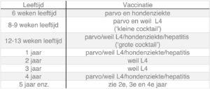 Dierenkliniek Tiel-Drumpt: De entingen die de hond nodig heeft, weergegeven in een tabel