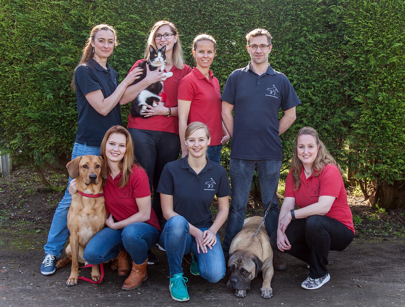 Dierenkliniek Tiel-Drumpt: Het hele team van dierenartsen, dierenartsassistentes met hun honden en katten.