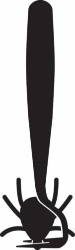 Dierenkliniek Tiel-Drumpt: Teek verwijderen: Schuif het haakje onder de kop door