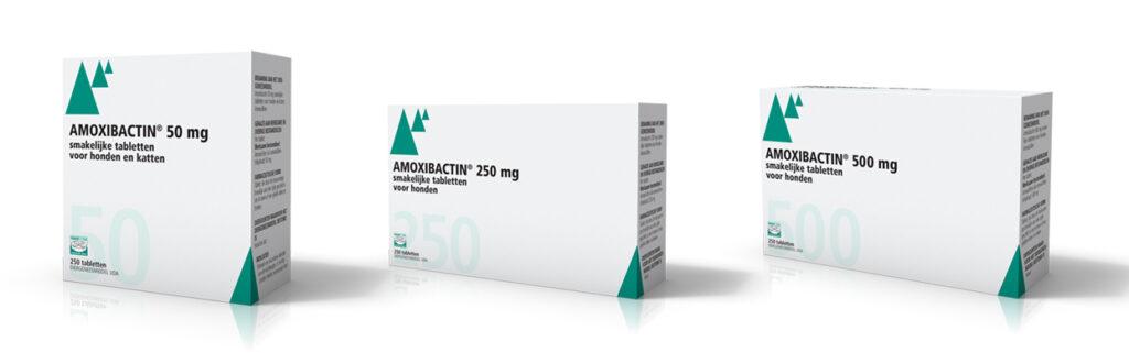 Dierenkliniek Tiel-Drumpt: Indien u medicatie van de dierenarts gekregen heeft, kunt u hier de bijsluiter vinden van: Amoxibactin