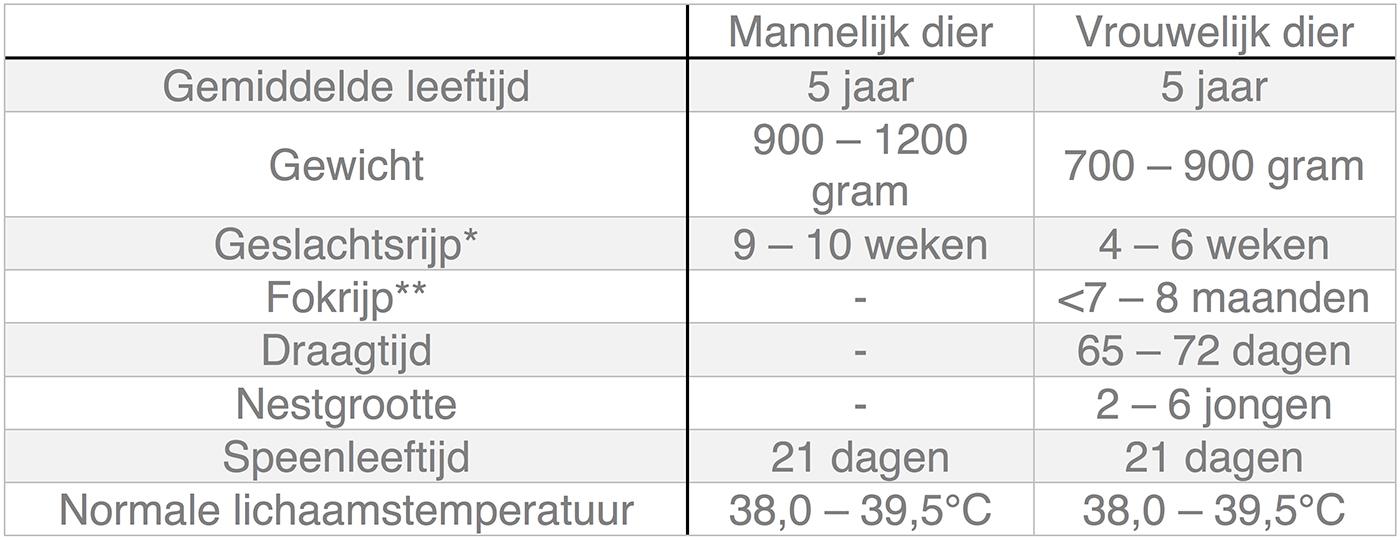 Dierenkliniek Tiel-Drumpt: In deze tabel kunt u algemene informatie terugvinden over de cavia.