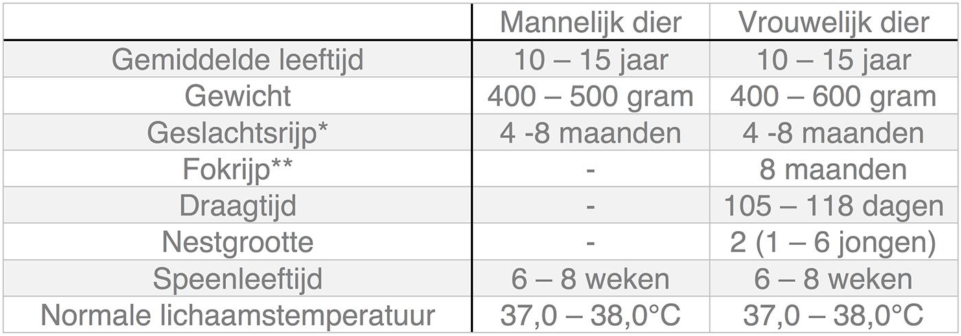 Dierenkliniek Tiel-Drumpt: In deze tabel kunt u algemene informatie terugvinden over de chinchilla.