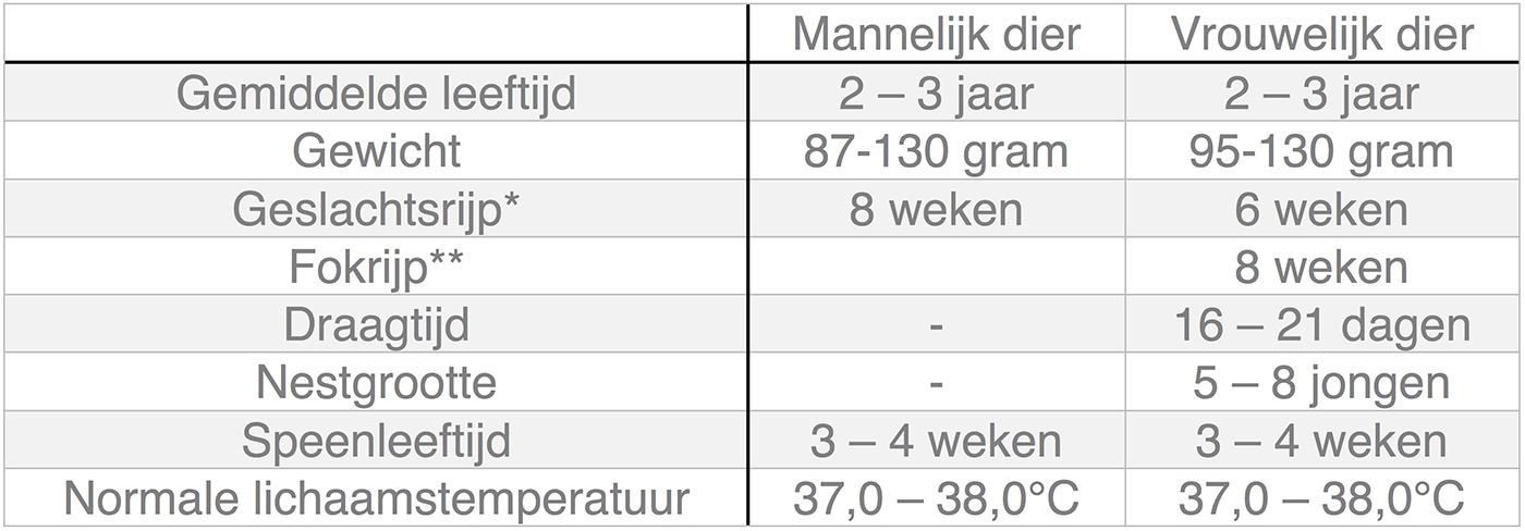 Dierenkliniek Tiel-Drumpt: In deze tabel kunt u algemene informatie terugvinden over de hamster.