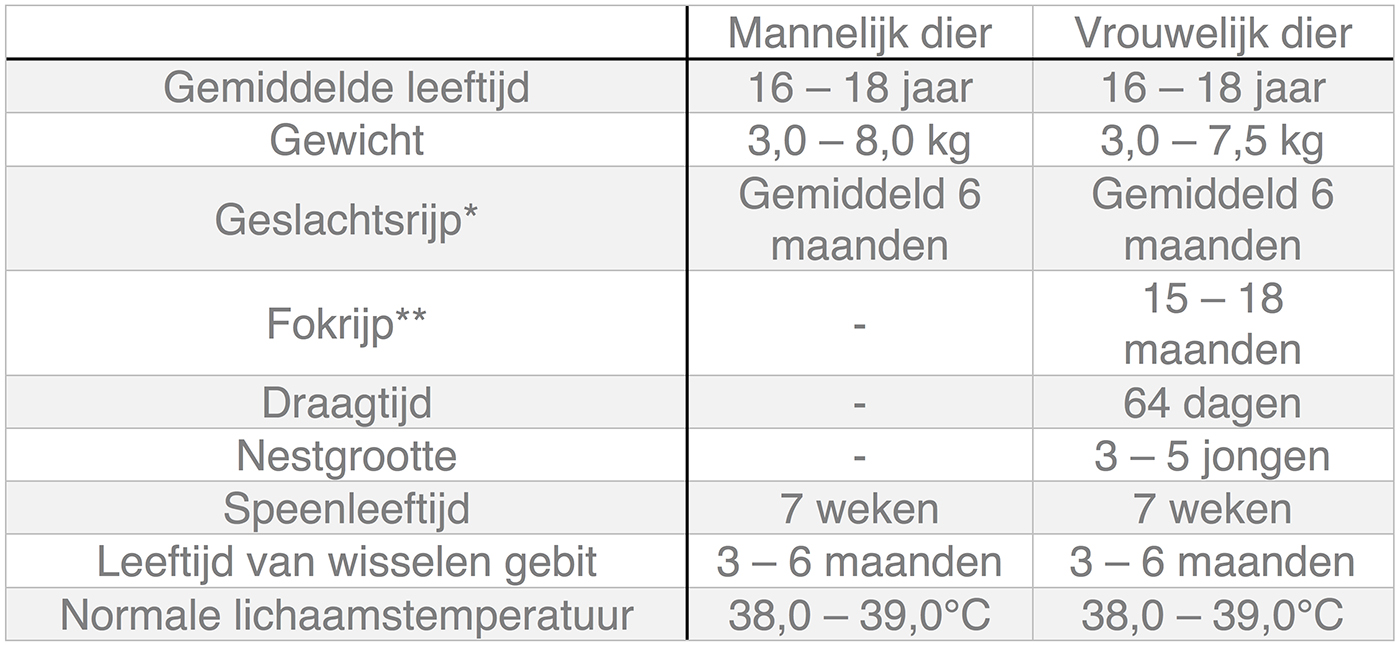 Dierenkliniek Tiel-Drumpt: In deze tabel kunt u algemene informatie terugvinden over de kat.