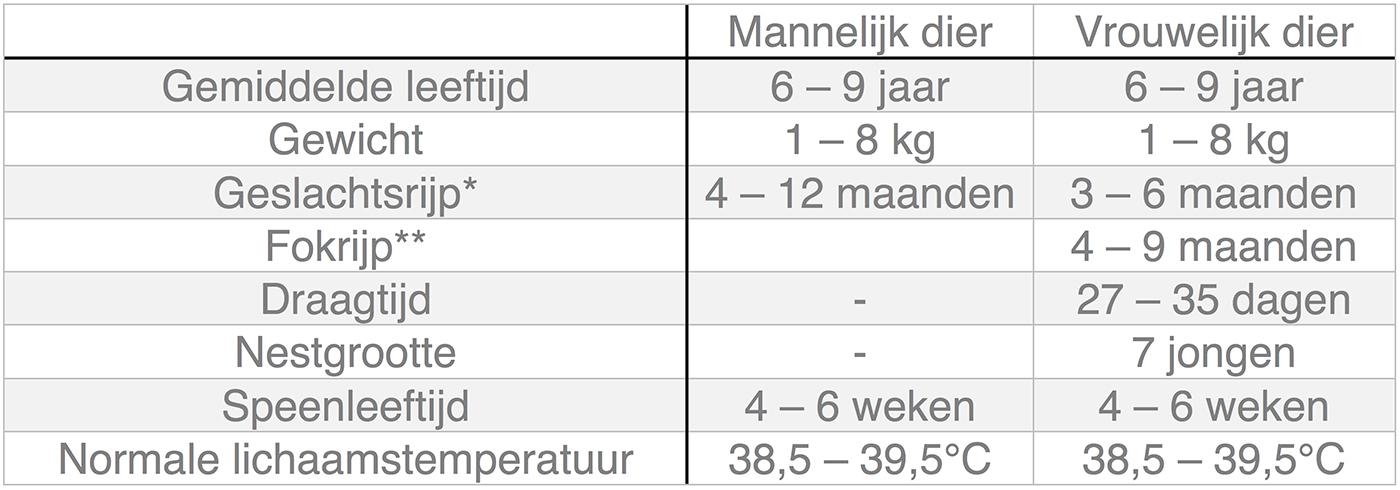 Dierenkliniek Tiel-Drumpt: In deze tabel kunt u algemene informatie terugvinden over het konijn.