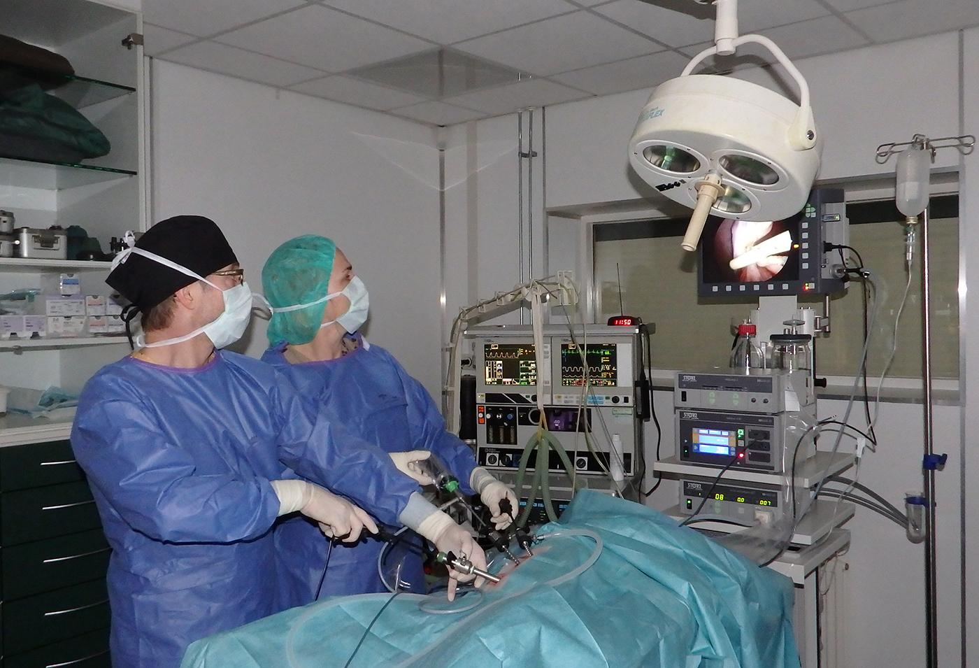 Dierenkliniek Tiel-Drumpt: In onze dierenartsenpraktijk is ook de mogelijkheid tot laparoscopische sterilisaties bij de hond.
