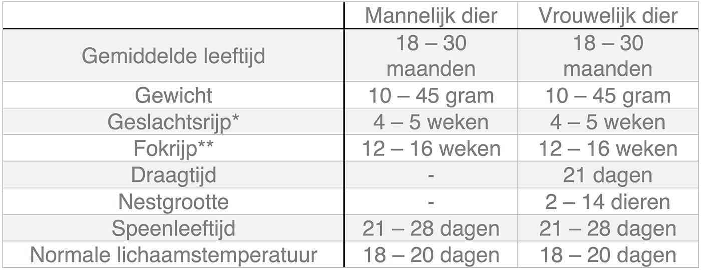Dierenkliniek Tiel-Drumpt: In deze tabel kunt u algemene informatie terugvinden over de muis.