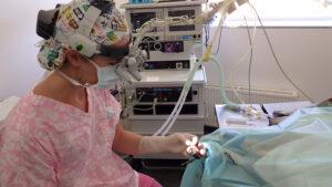 Dierenkliniek Tiel-Drumpt: De Schotse collie Xander loopt mank: Er moet met een loepbril geopereerd worden.