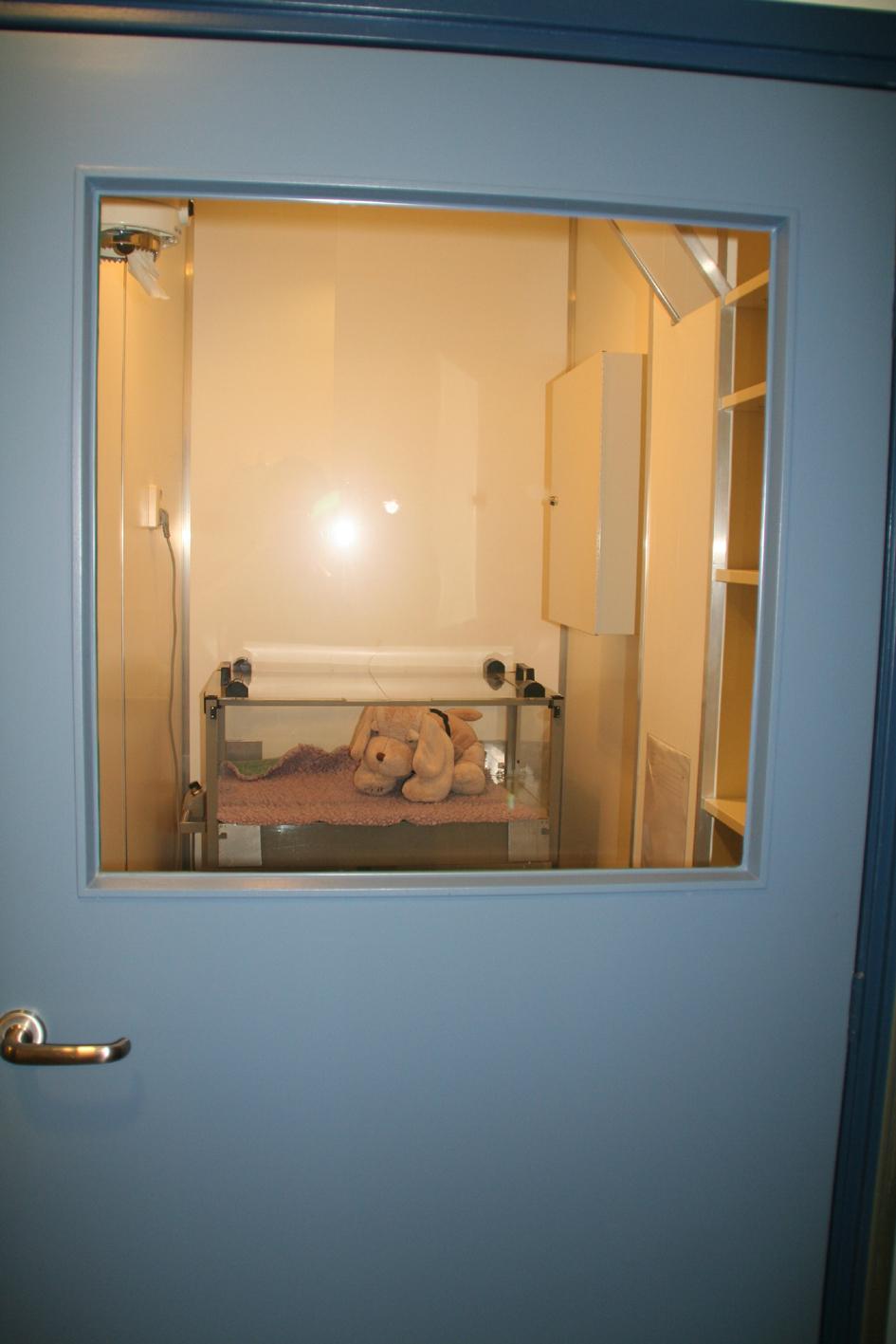 Dierenkliniek Tiel-Drumpt: In de quarantaine kunnen de dierenartsen dieren behandelen die gescheiden moeten worden gehouden van de andere dieren.