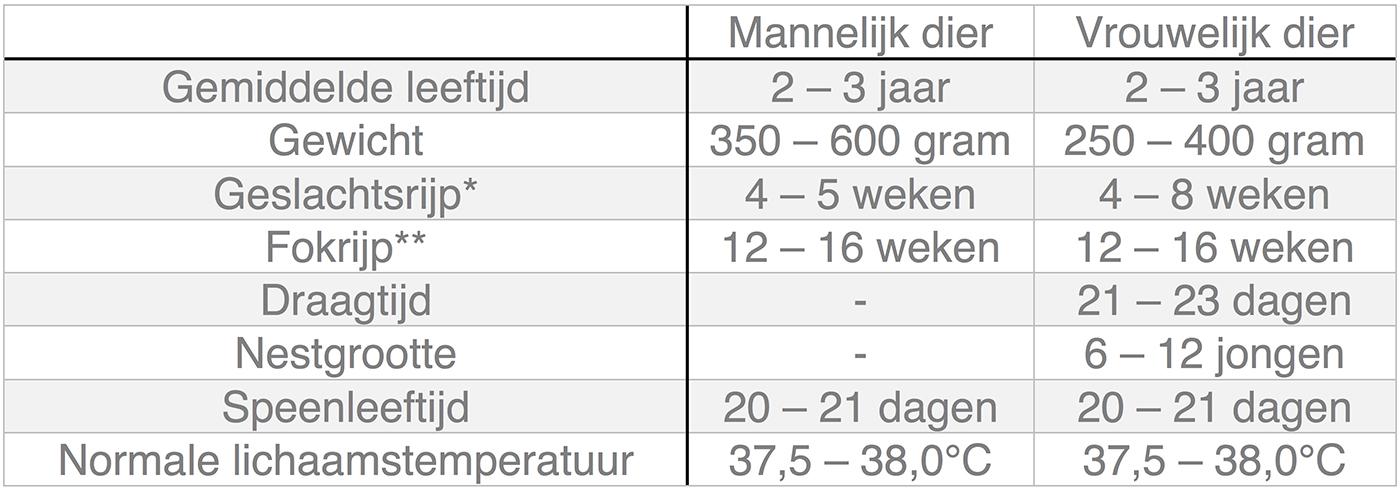 Dierenkliniek Tiel-Drumpt: In deze tabel kunt u algemene informatie terugvinden over de rat.