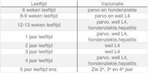 Dierenkliniek Tiel-Drumpt: Het vaccinatie schema voor de hond. Wanneer is het aan te raden voor welke ziekte te enten.