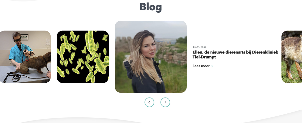 Dierenkliniek Tiel-Drumpt: Nieuwe homepage op de website