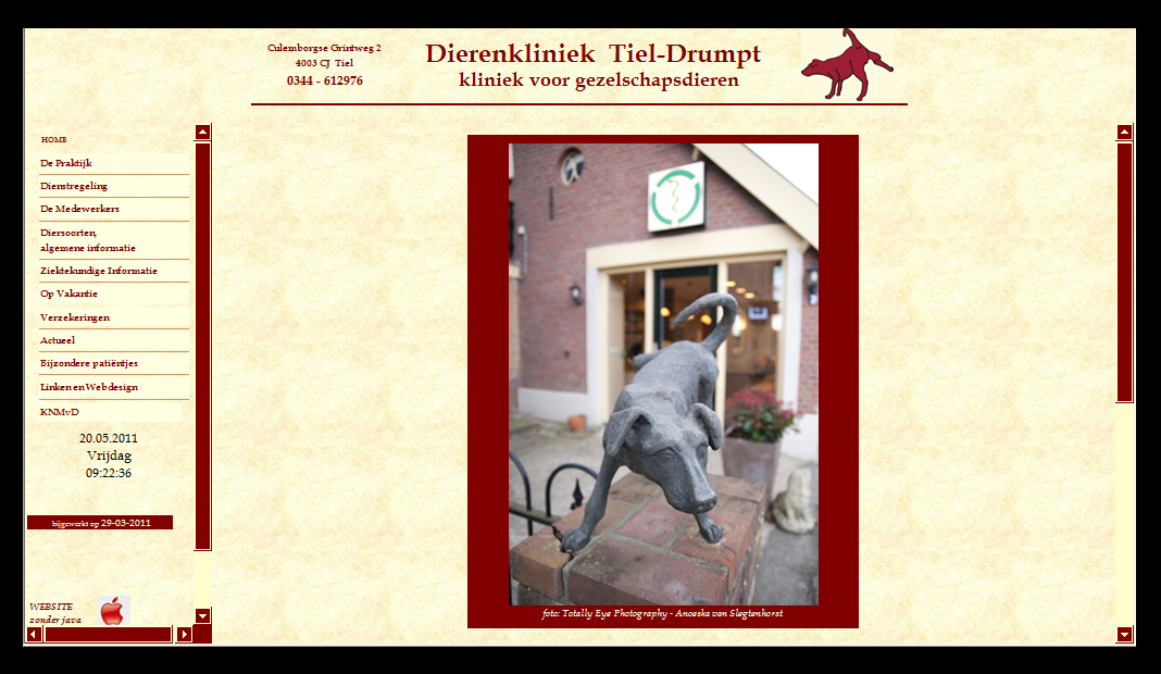 Dierenkliniek Tiel-Drumpt: de eerste website